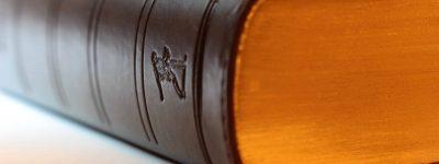 משפט מנהי ומכרזים